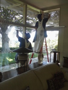 Professional and Safe Window Cleaning Services